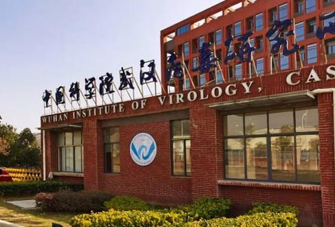 कोविड-19 की उत्पत्ति पर एक स्टडी में विस्फोटक दावा, चीनी वैज्ञानिकों ने कोरोनावायरस को लैब में तैयार किया - bhaskarhindi.com