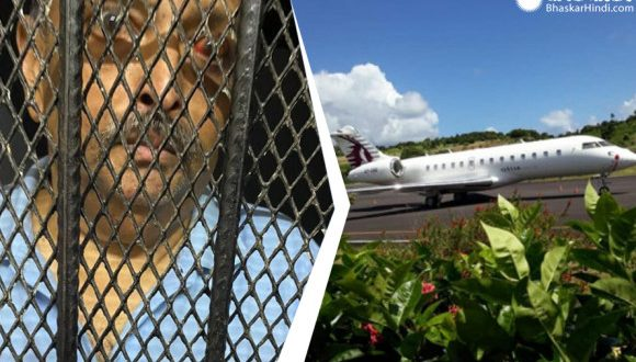 डोमिनिका की कोर्ट में भगोड़े व्यवसायी मेहुल चोकसी की सुनवाई, फैसला गुरुवार तक के लिए टला - bhaskarhindi.com